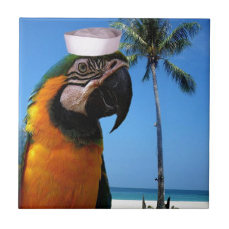 Beach Parrot Small Square Tile