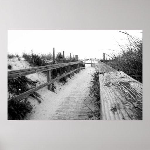 Beach Path Photo Print