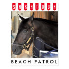 Beach Patrol Postcard
