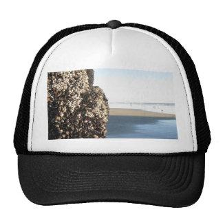 Beach photography 1 cap