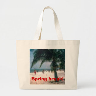 beach pic, Spring break! Bags