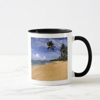 Beach Puerto Rico 2 Mug