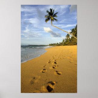 Beach Puerto Rico Poster