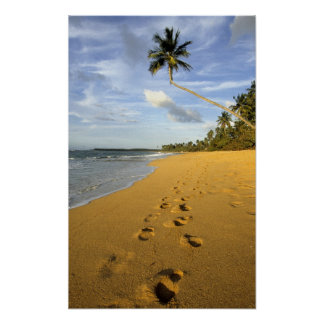 Beach Puerto Rico Posters