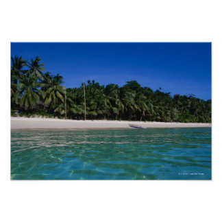 Beach, raft in a distance poster