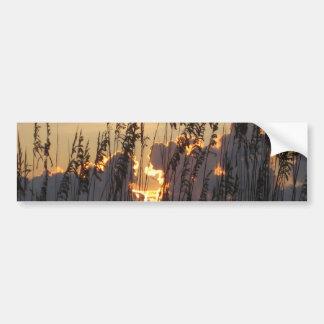 Beach Reeds Sunset Bumper Sticker
