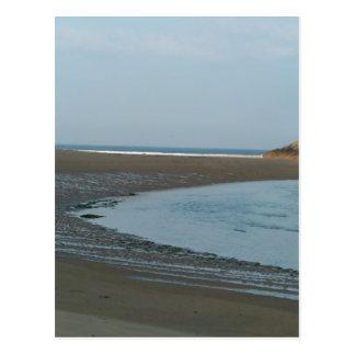 Beach River Postcard