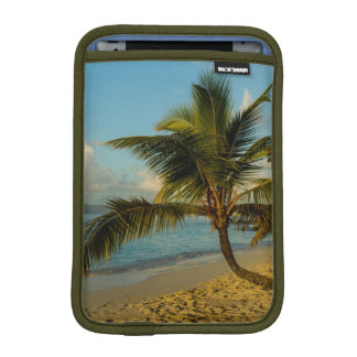 Beach scenic iPad mini sleeve