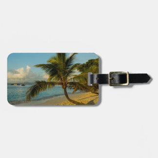 Beach scenic luggage tag