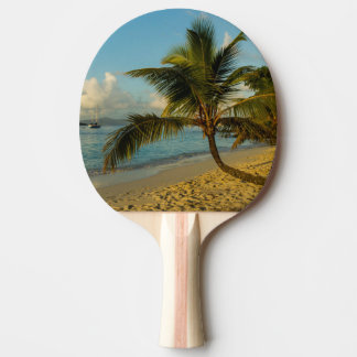 Beach scenic ping pong paddle
