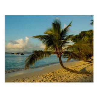 Beach scenic postcard
