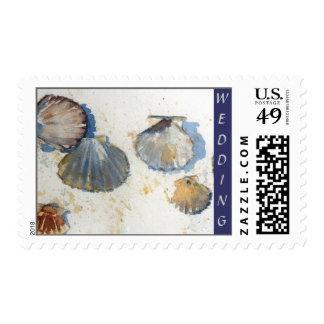 Beach Sea Shells Wedding Collection Postage Stamp