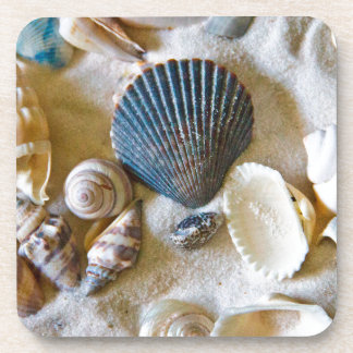 Beach Shells Theme #1 Coaster