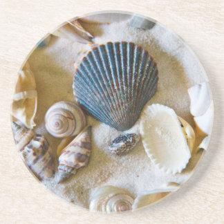 Beach Shells Theme #1 Coaster