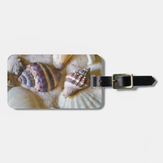 Beach Shells Theme #2 Bag Tag