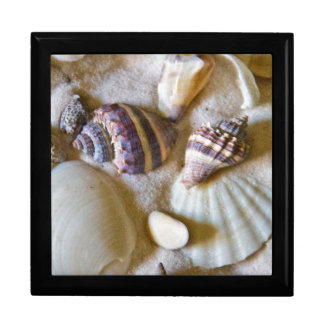 Beach Shells Theme #2 Large Square Gift Box