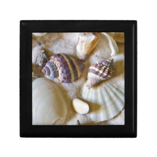 Beach Shells Theme #2 Small Square Gift Box