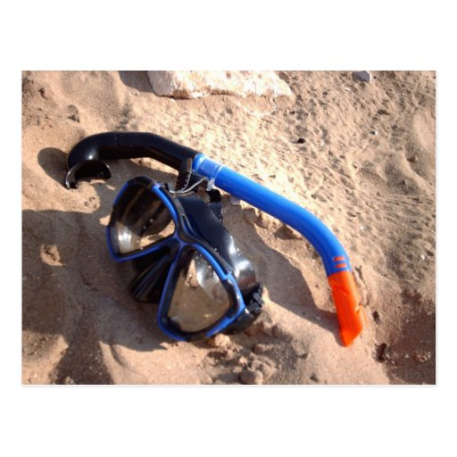 Beach snorkel and goggles Postcard