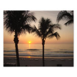 Beach Sunset Ocean Palm Tree Photography Art Print
