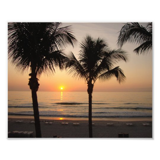 Beach Sunset Ocean Palm Tree Photography Art Print