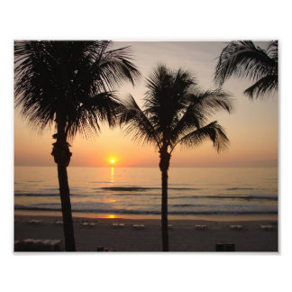 Beach Sunset Ocean Palm Tree Photography Art Print Photo Art