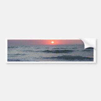 beach, sunset, palm trees, flowers, springtime bumper sticker