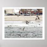Beach Town Pelicans Print