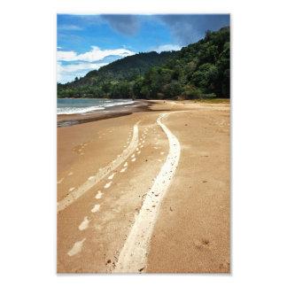 beach tracks art photo