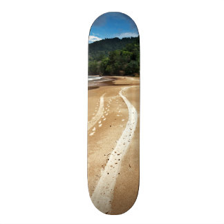 beach tracks custom skateboard