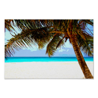 Beach Tropical Poster
