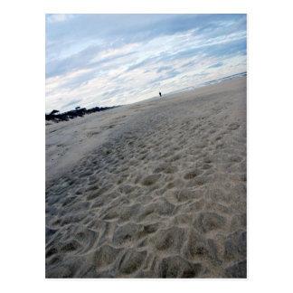 Beach Walk Postcard