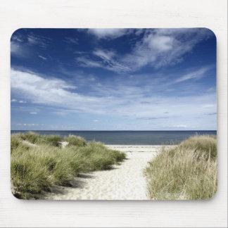 Beach, Welfleet MA Mouse Pad
