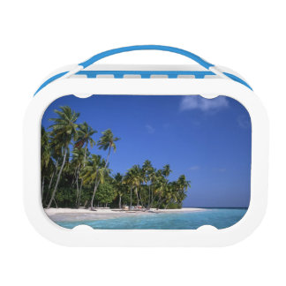 Beach with palm trees, Maldives Lunch Box