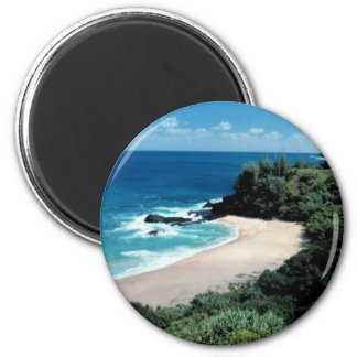 beach_with_trees refrigerator magnets