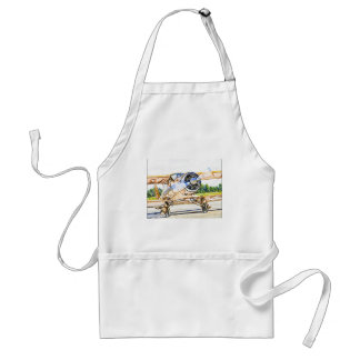 Beachcraft Staggerwing Vintage aircraft Apron