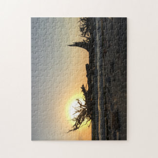 Beached Driftwood at Sunset Jigsaw Puzzle