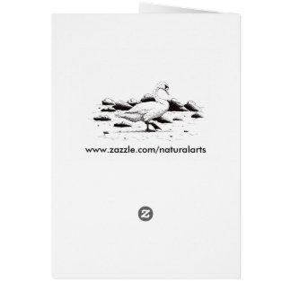 beached swan pen & ink bird drawing greeting card