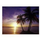 Beaches at Negril, Jamaica 3 Postcard