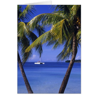 Beaches at Negril, Jamaica Card