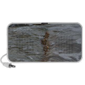 Beaches iPhone Speakers