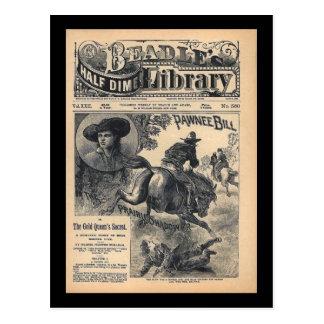 Beadles Half Dime Library Vol XXII No 560 1888 Postcard