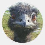 Beady Eyes EMU Round Sticker