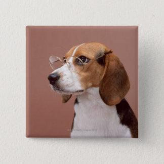 Beagle 15 Cm Square Badge
