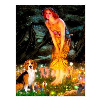 Beagle 7 - MidEve Post Cards