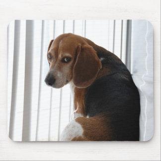beagle attitude mouse pad