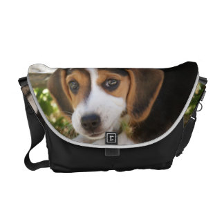 Beagle Baby Dog Messenger Bags
