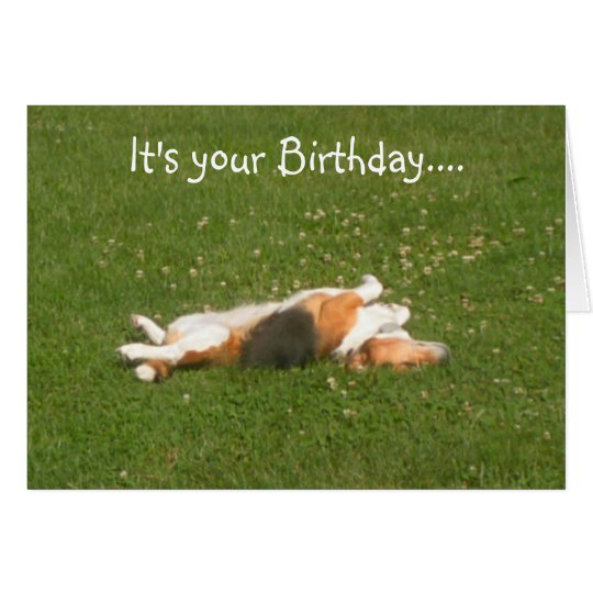 Beagle Birthday Card (Funny)