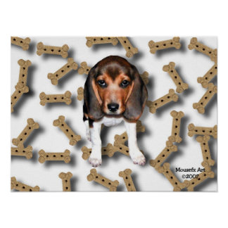 Beagle & Biscuits Poster