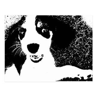 Beagle Black & White Postcard