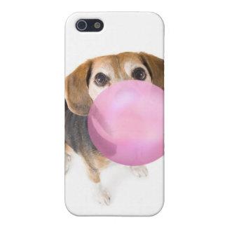 beagle blow iPhone 5 case